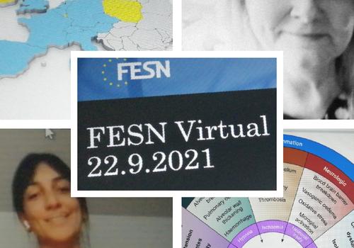 FESN Virtual Event 2021
